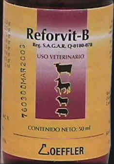 Reforvit B -50 ml-