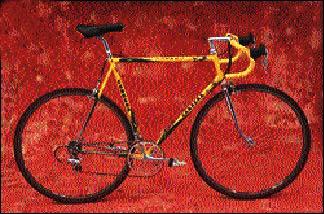 Steel Bikes - Carrera Team