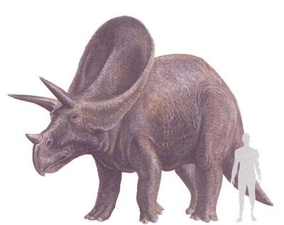 Loncosaurus-Mamenchisaurus