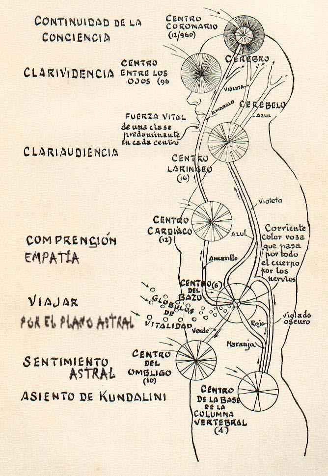 Contemporáneo Anatomía De Una Corriente Inspiración - Anatomía de ...