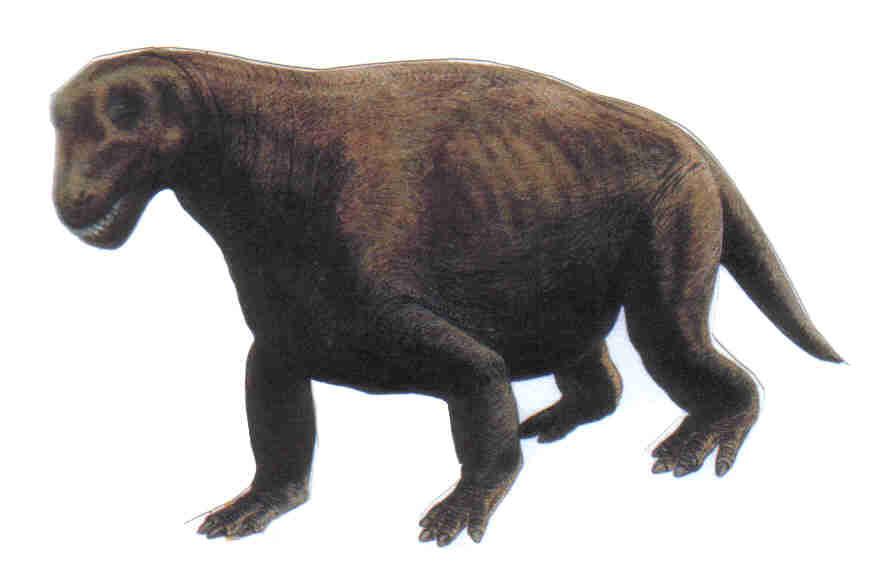 Cat Brontosaurus Picture