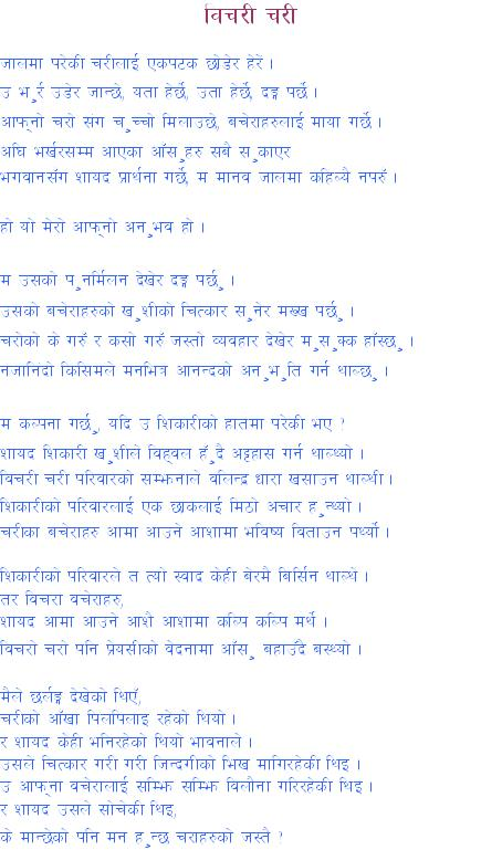 all about nepali culture essay