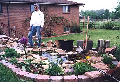 The upper water garden for Pond veggie filter
