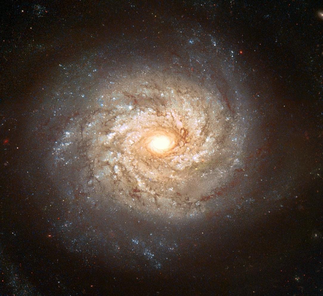 Beautiful Galaxy Photo...