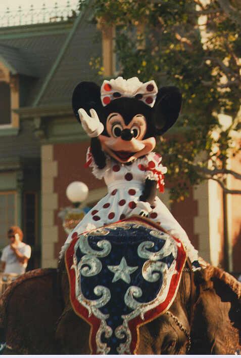 Close Up Of Minnie