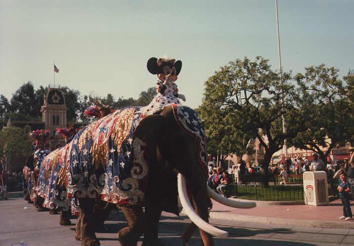 Minnie On Elephant