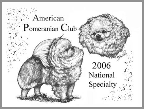 Doublesse Pomeranians And Shih Tzu
