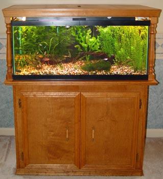 Fish tank stand 40 gallon breeder 40 gallon fish for Small fish tank stand