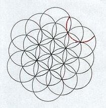 Comment dessiner une fleur de vie - Comment dessiner une fleur ...