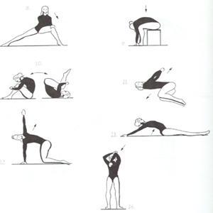 Elabore un plan de acondicionamiento y entrenamiento en for Acondicionamiento fisico