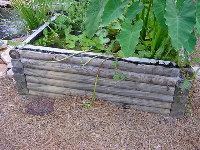 Veggie filter for Pond veggie filter
