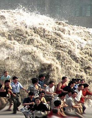 How I Survived Tsunami