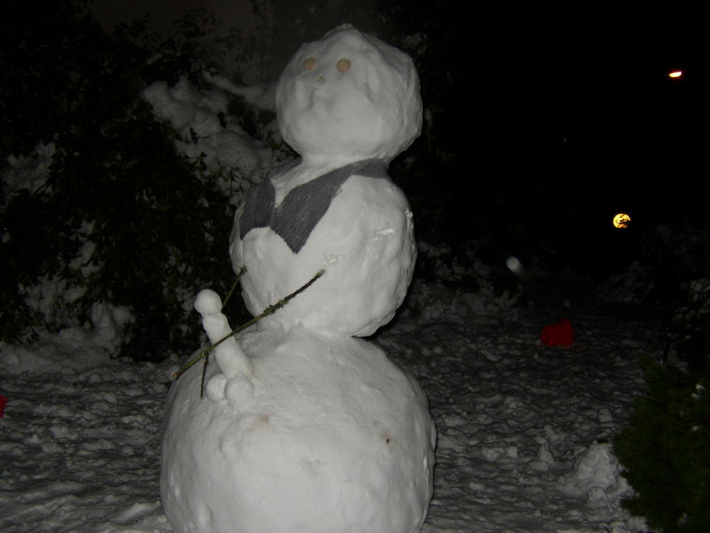 who put thr dick on the snowman