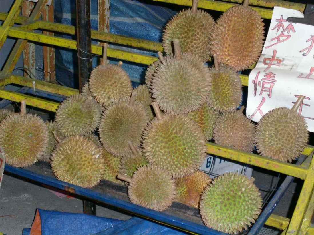 [Bild: durians.jpg]