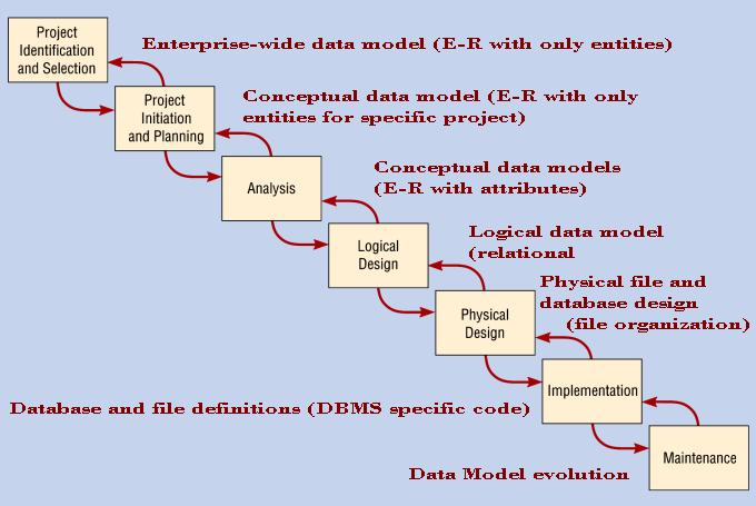 Chapter 10 : Structured System Requirements: Conceptual