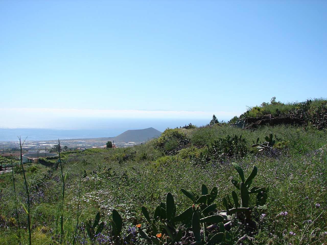 Terreno in vendita tenerife proprieta immobiliare isole - Immobiliare spagna ...