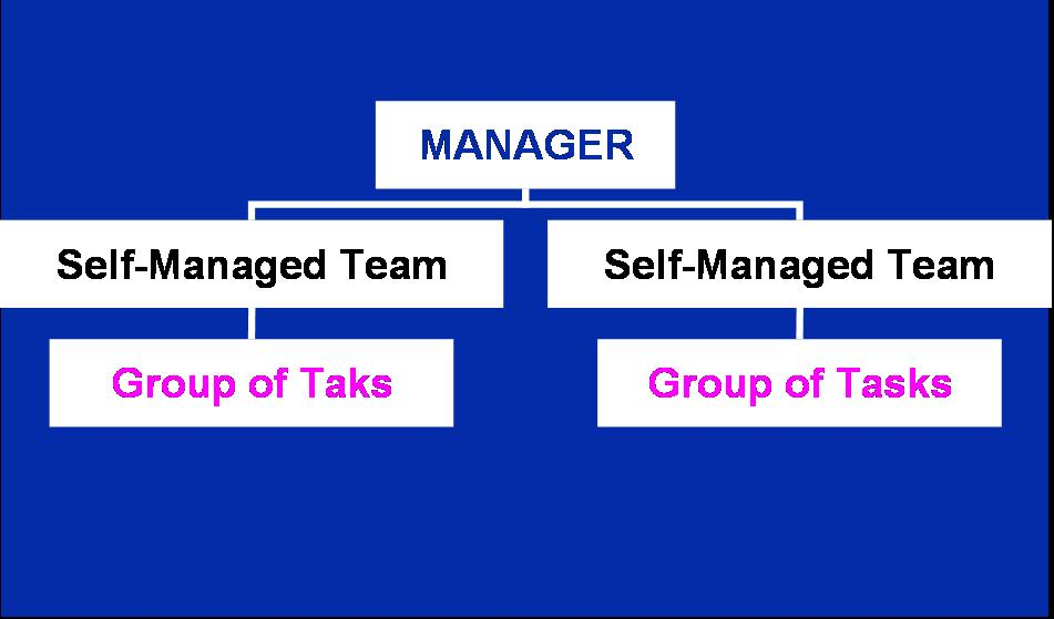 self management team Self management in the workplace is when a manager sets the overall direction, and empowers the team to get the work done with little oversight.