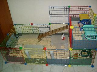 My D I Y Cage