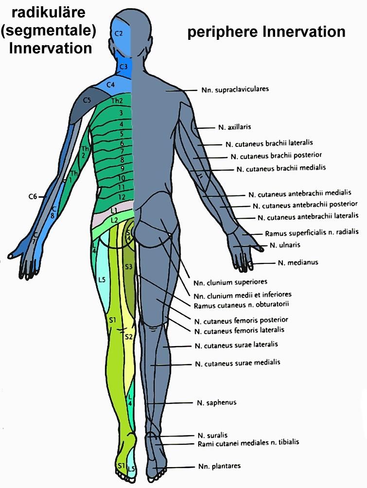 Physiotherapie bei Kindern und Jugendlichen