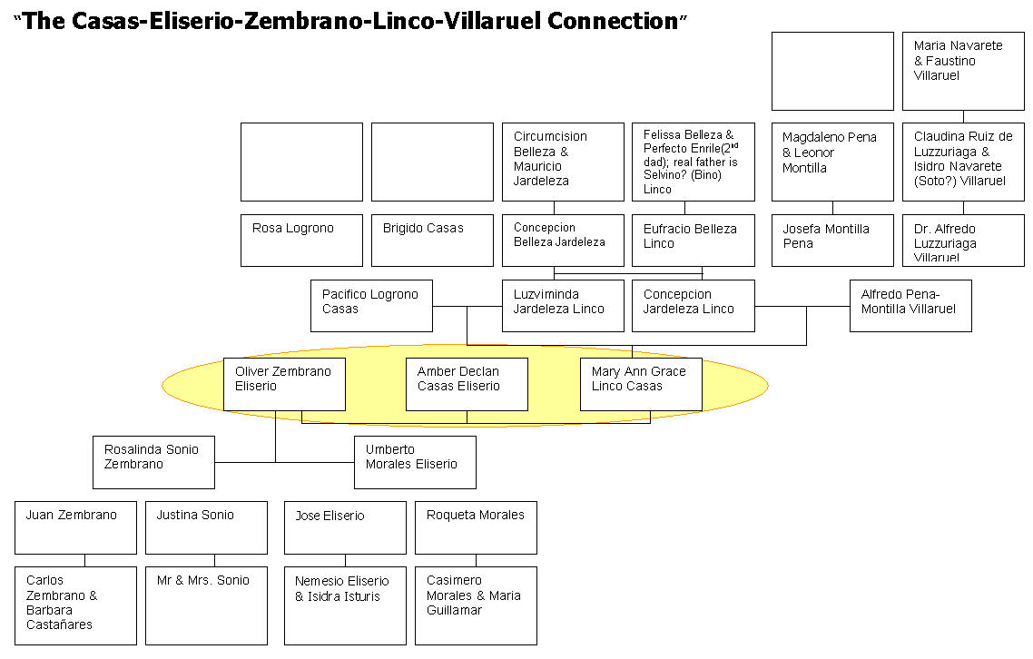 family tree chart of jose rizal A family tree, or pedigree chart, is a chart representing family relationships in a conventional tree structurethe more detailed family trees used in medicine and social work are known as genograms.