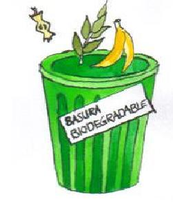 Biodegradable y no biodegradable