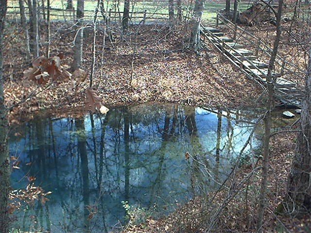 Redclayge the blue hole spring at red clay state park publicscrutiny Image collections