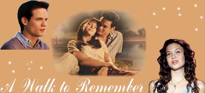 a walk to remember novel summary
