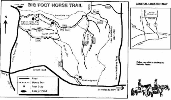 Bigfoot Horse Trail Hiking In Mississippi
