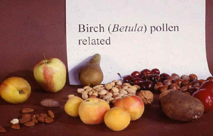 kiwi allergi symptom