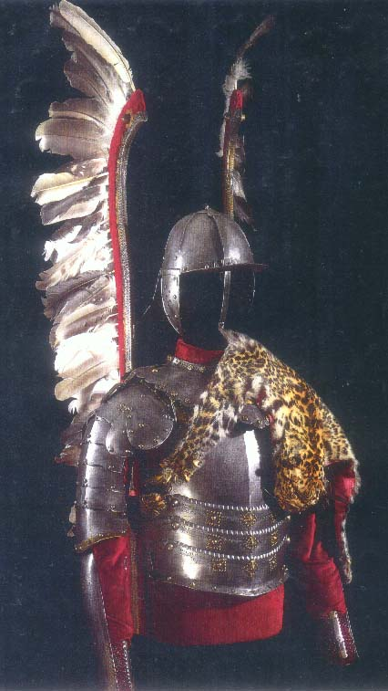 how to get winged hussars in fire and sword