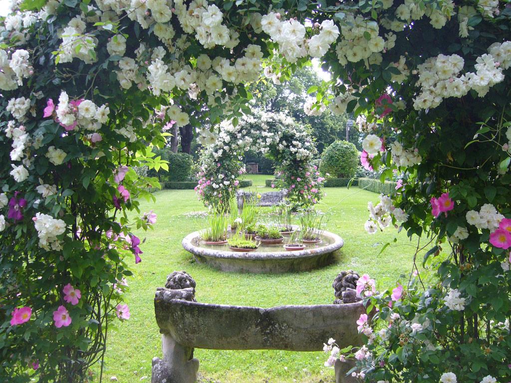 Giardino for Cespugli fioriti da giardino