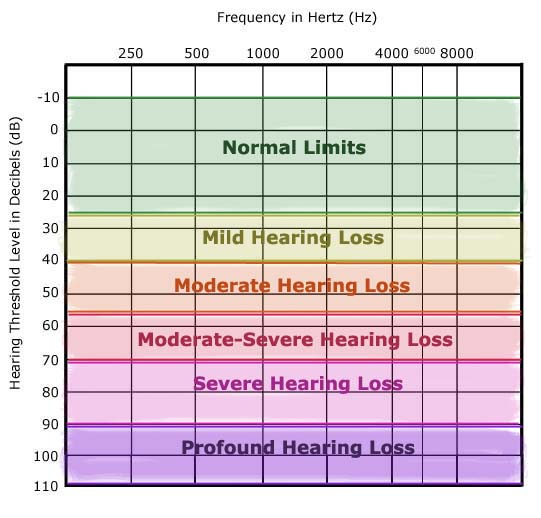 288592 additionally 83944 Hearing Loss Scale moreover Hearing Aid Cleaning Kit 2 likewise What is otosclerosis ear likewise prendre Son Audiogramme. on types of hearing loss audiogram