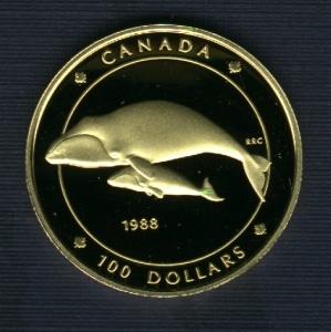 fish gold dollar