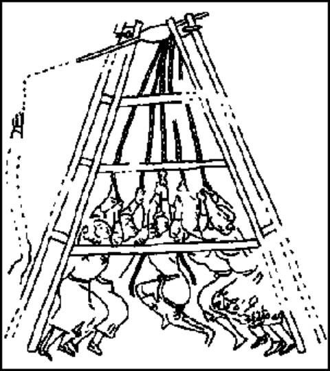 Catapult Coloring Page Sketch Templates further Lesson Build A Catapult further US20120231433 together with o Hacer Catapulta Trebuchet Casera further Trebuchet Class. on trebuchet sketch