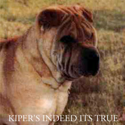 Kiper's Indeed Its True
